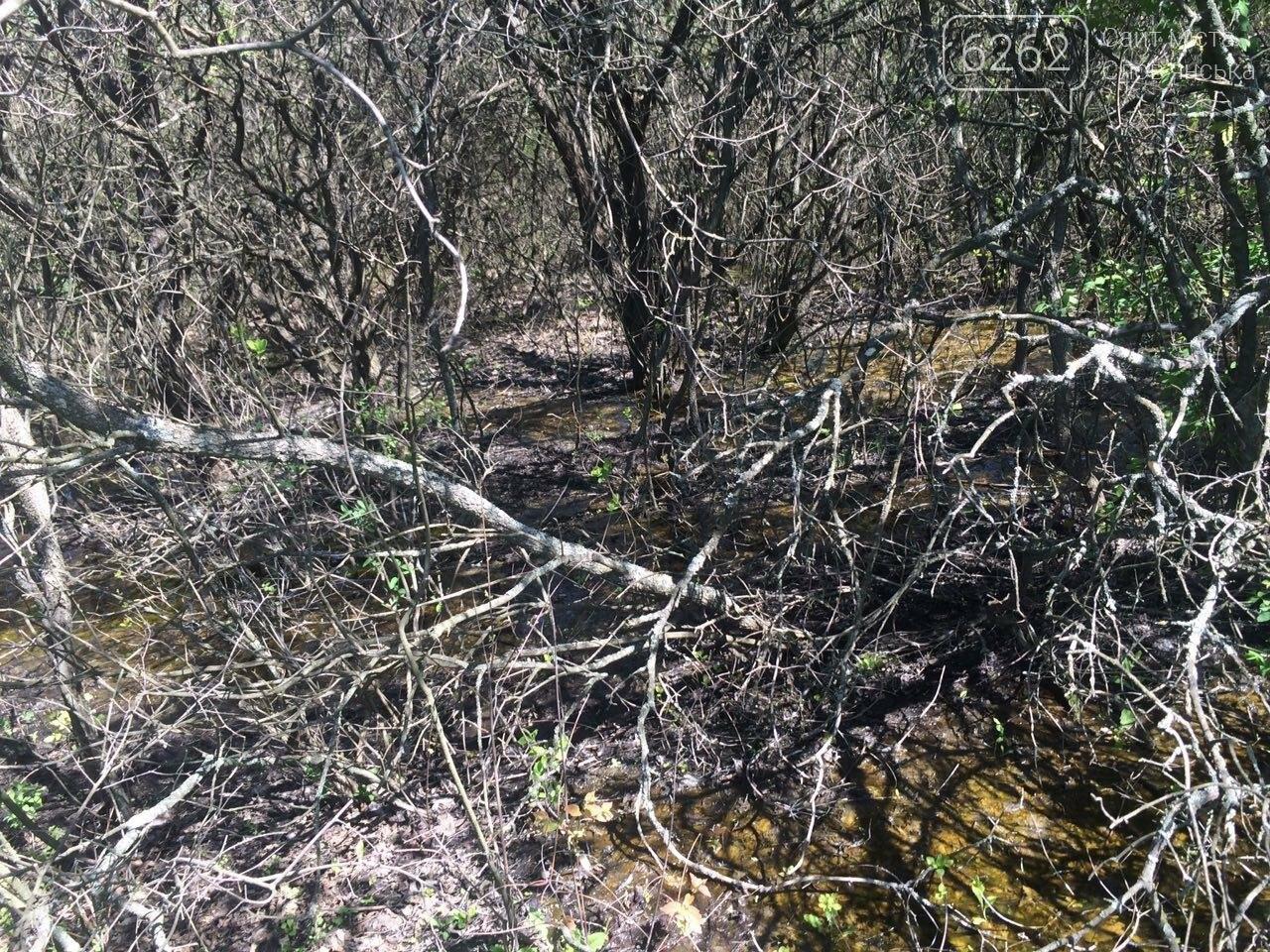 Порыв воды возле Славянска затопил часть посадки, фото-1