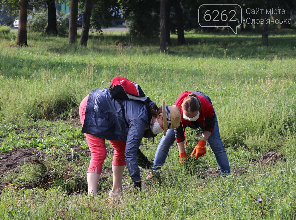 Мешканці Слов'янська прибирали територію скверу Мрія під майбутній інклюзивний майданчик, фото-2