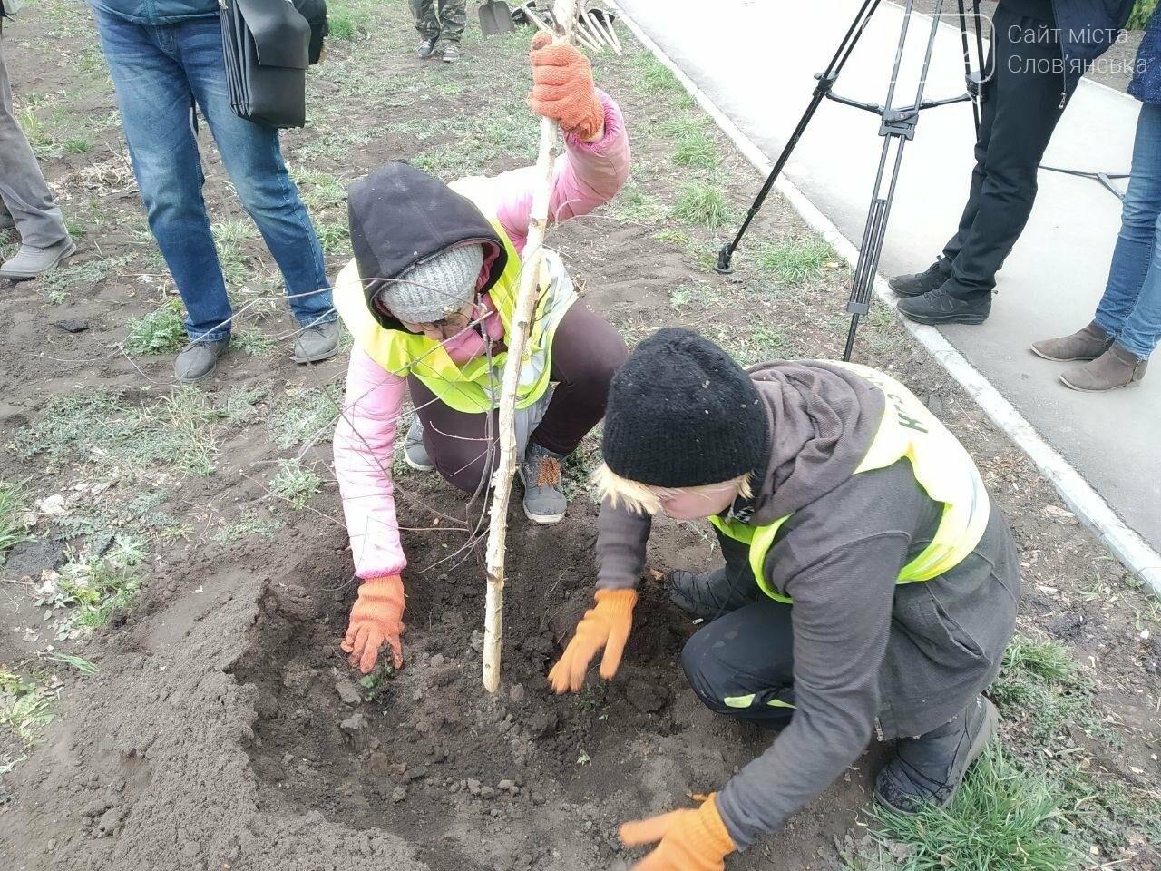 Сьогодні у Слов'янську садять дерева, фото-3
