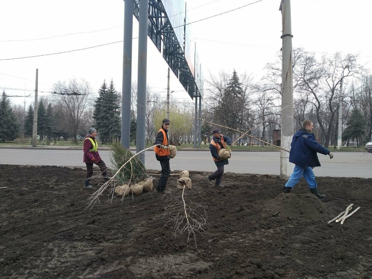 Сьогодні у Слов'янську садять дерева, фото-6