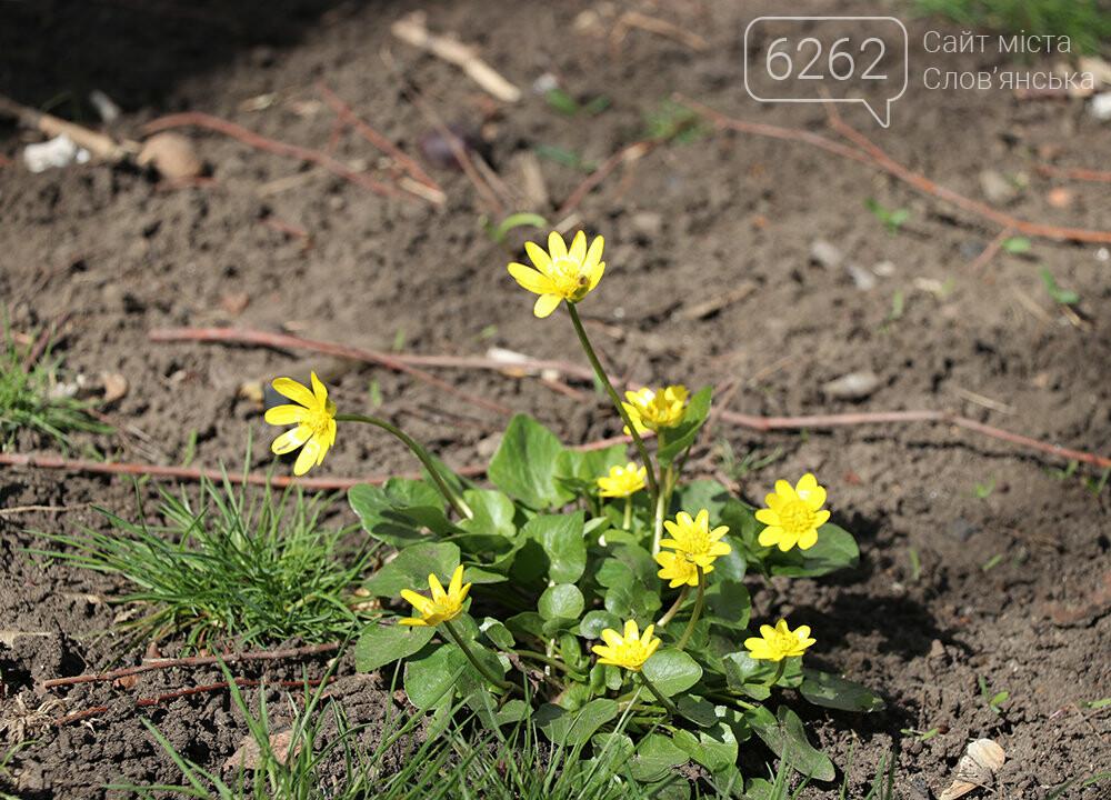 У Слов'янську прокидається природа (фото), фото-4
