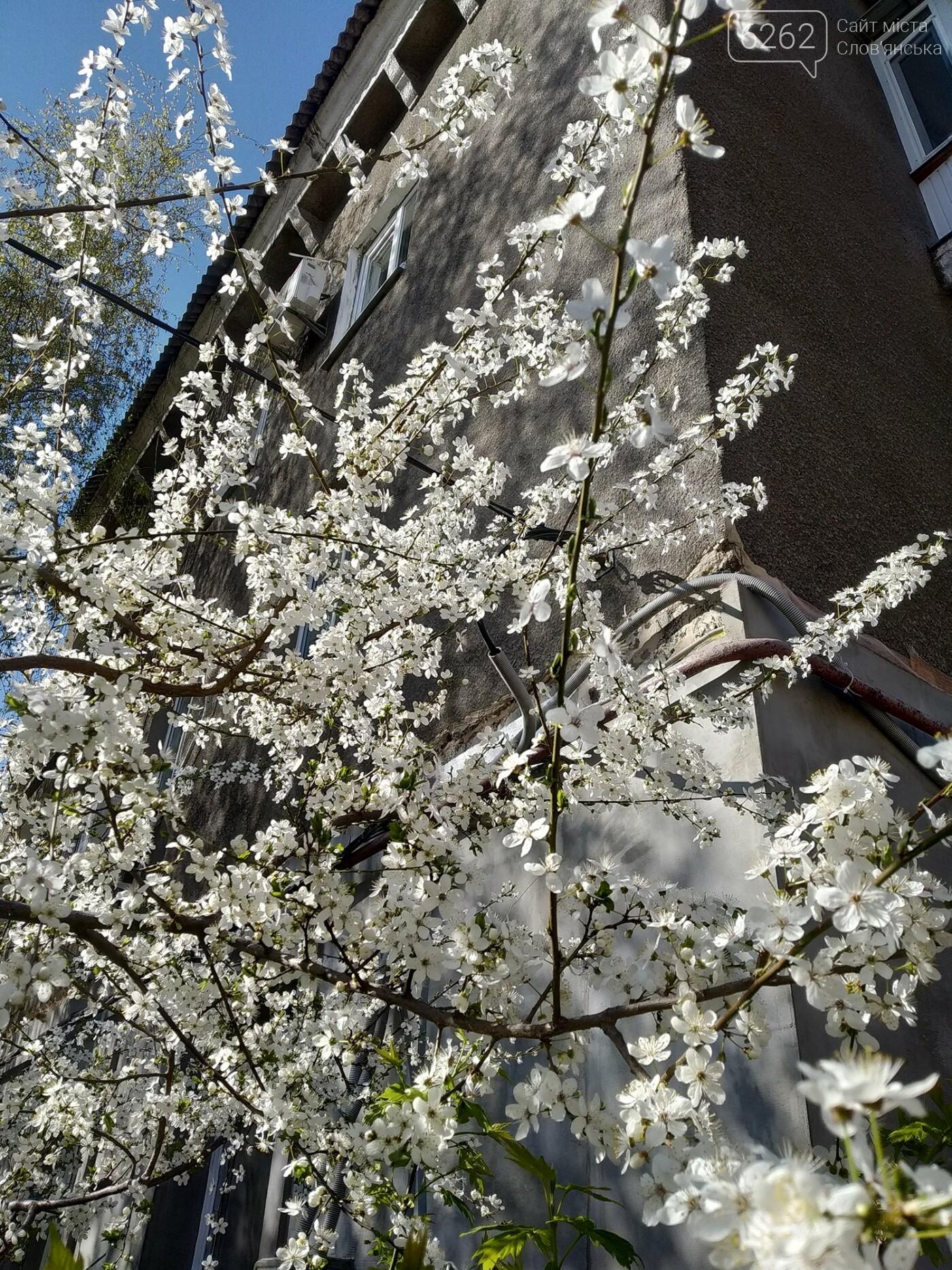 Весна дихає в обличчя: фотопрогулянка мікрорайоном Лісний у Слов'янську, фото-2