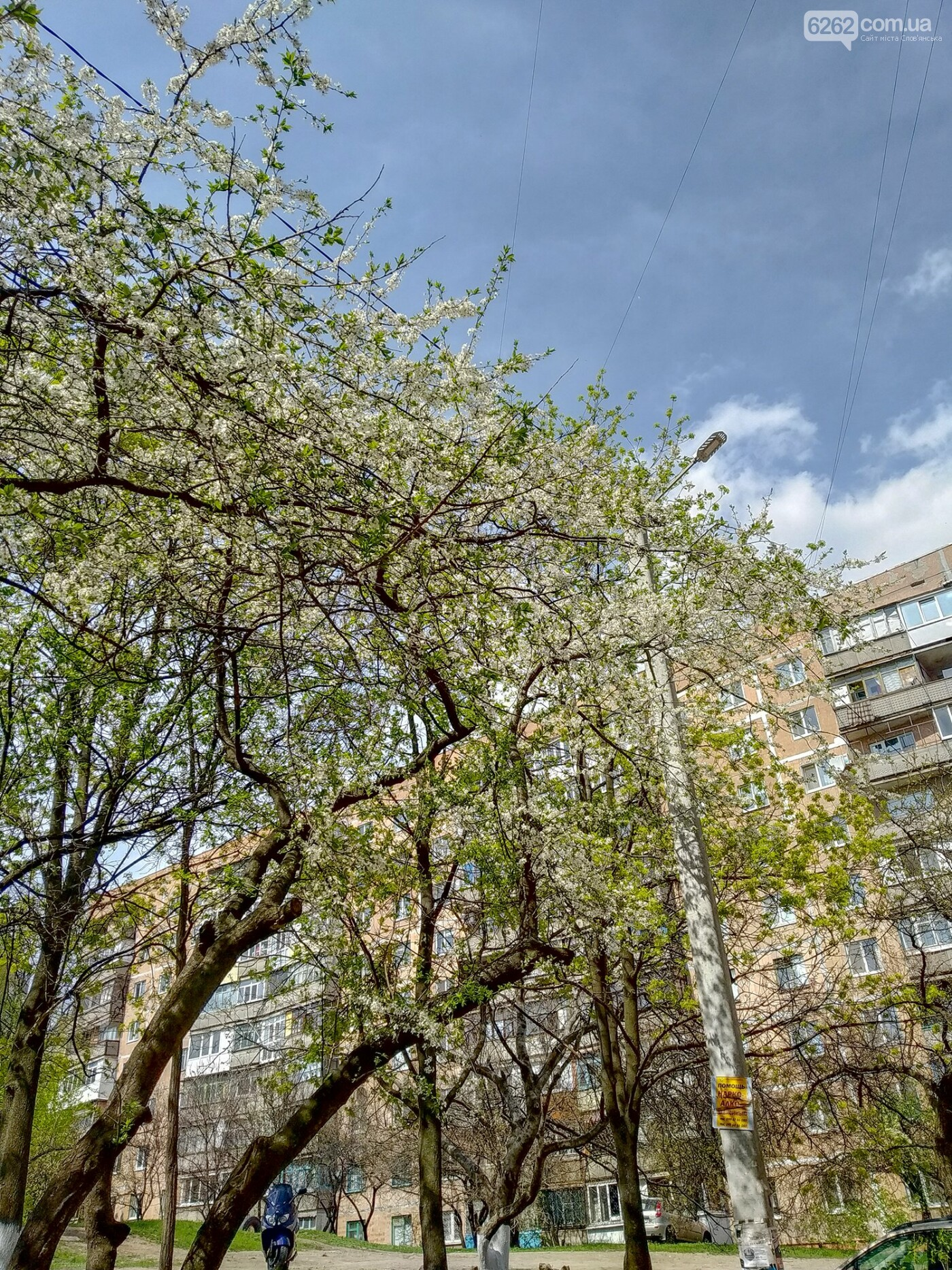 Весна дихає в обличчя: фотопрогулянка мікрорайоном Лісний у Слов'янську, фото-6