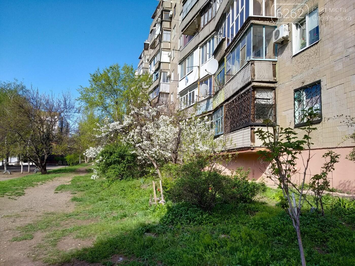 Весна дихає в обличчя: фотопрогулянка мікрорайоном Лісний у Слов'янську, фото-15