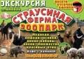 Yampol ZOO - Краснолиманская Страусиная Ферма - ЗООПАРК, подарки и сувениры в Ямполе