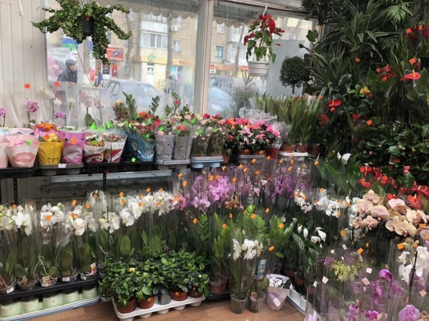 Цветов спб, магазин цветов у ботанического сада ассортимент