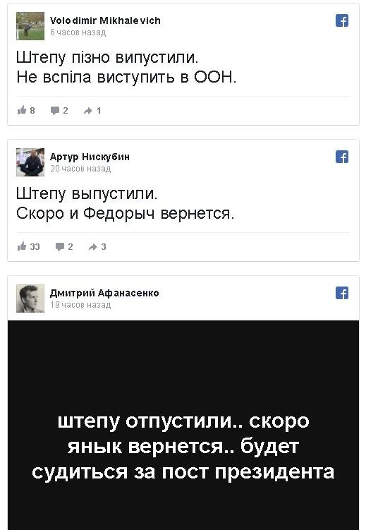 Шабаш ватников и приговор судебной системе - реакция Киева на освобождение Штепы , фото-1