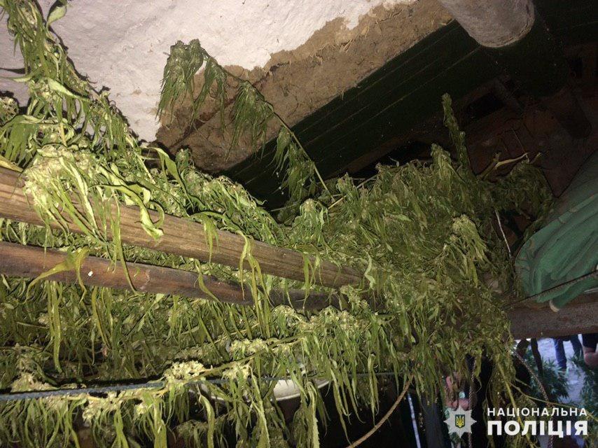 """Марихуана, боеприпасы и белый порошок. """"Находки"""" полиции Славянска в сентябре, фото-2"""