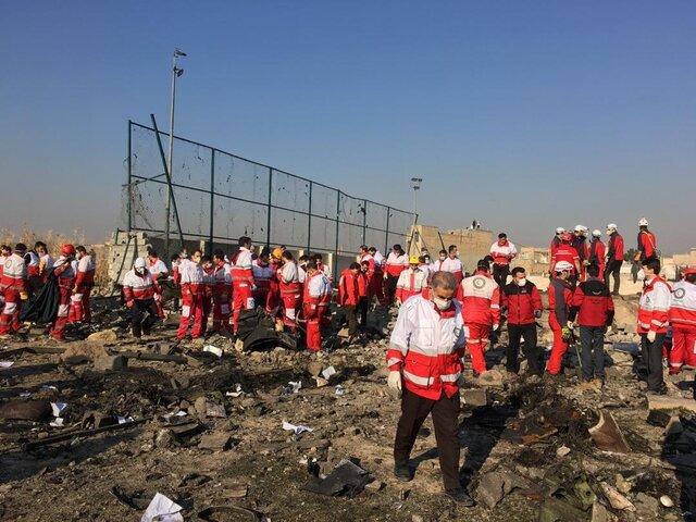 Крушение Boeing 737-800 - 176 погибших. В Украине на время прекратят перелеты в Иран, фото-4