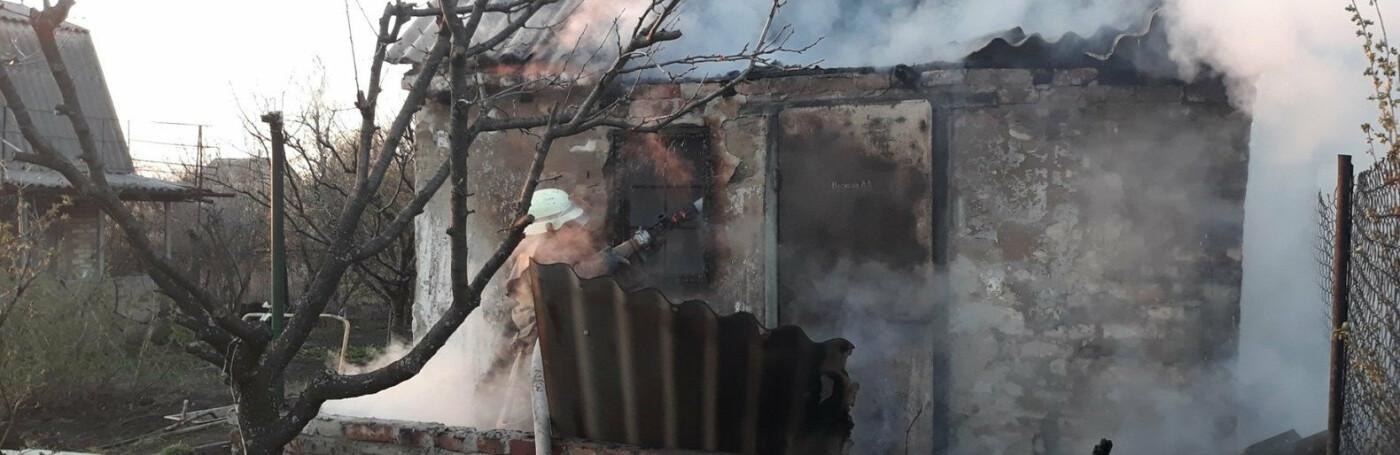 Вбивство, аварії та викопані дерева: що сталося у Слов'янську протягом тижня, фото-4