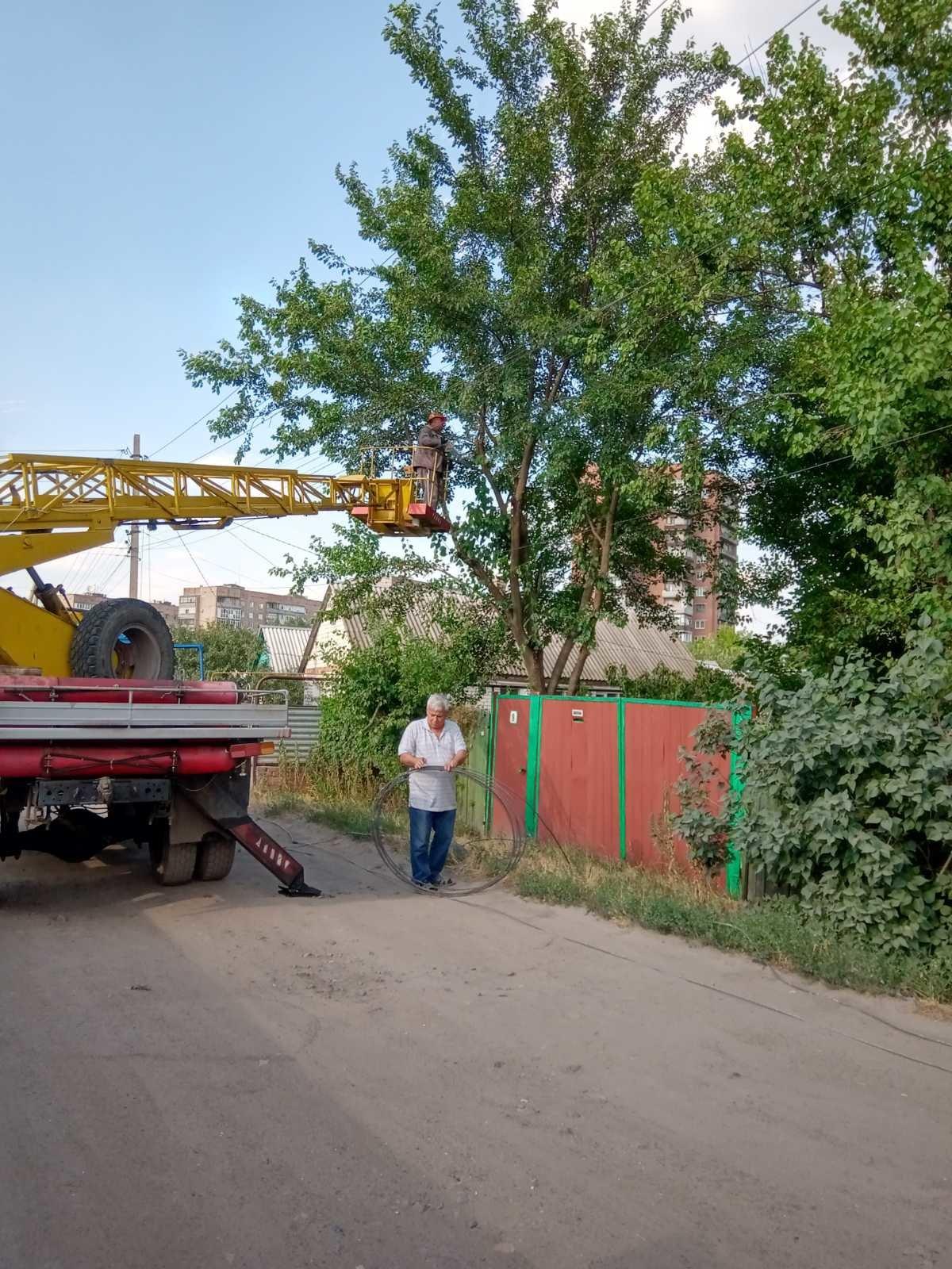 Винувата гілка шовковиці: у Слов'янську «стрибок» електроенергії спалив людям техніку, фото-2