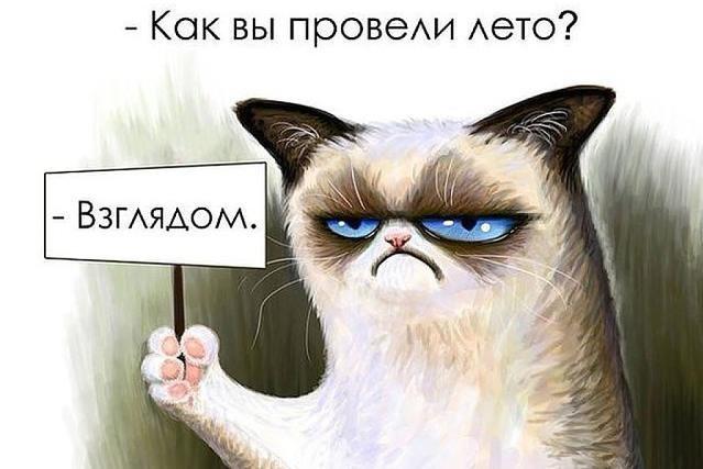 """""""Вот и лето прошло"""". Смішні картинки про кінець літа, фото-7"""