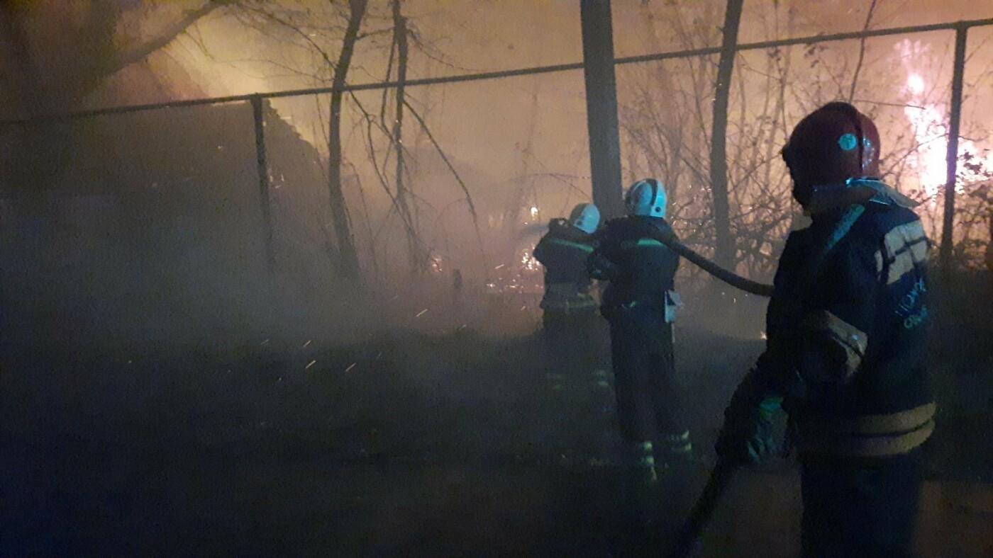 Луганщина у вогні: пожежі поширилися майже на 10 тис. гектарів за добу, фото-3
