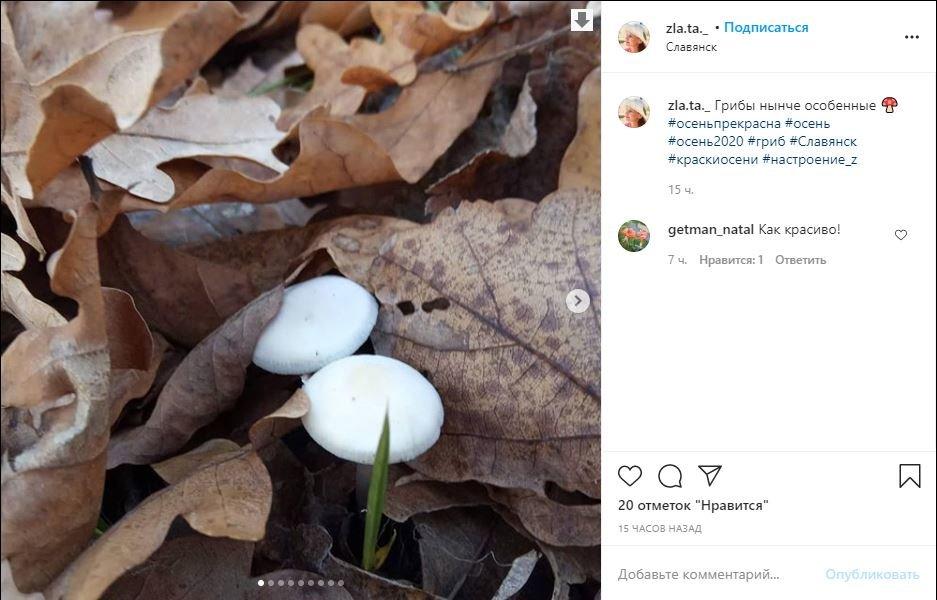 Морозний Слов'янськ у фотографіях. Підбірка з соцмереж, фото-10