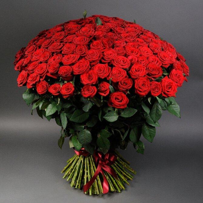 Як святкують День закоханих у різних країнах, фото-1