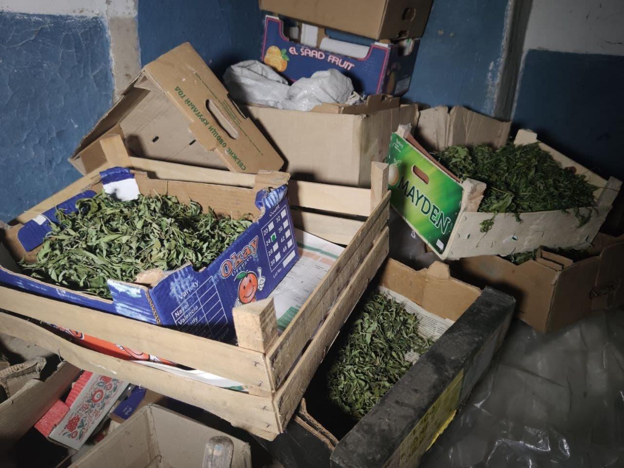 У сімейного дебошира з Райгородка знайшли шість ящиків з марихуаною, фото-1