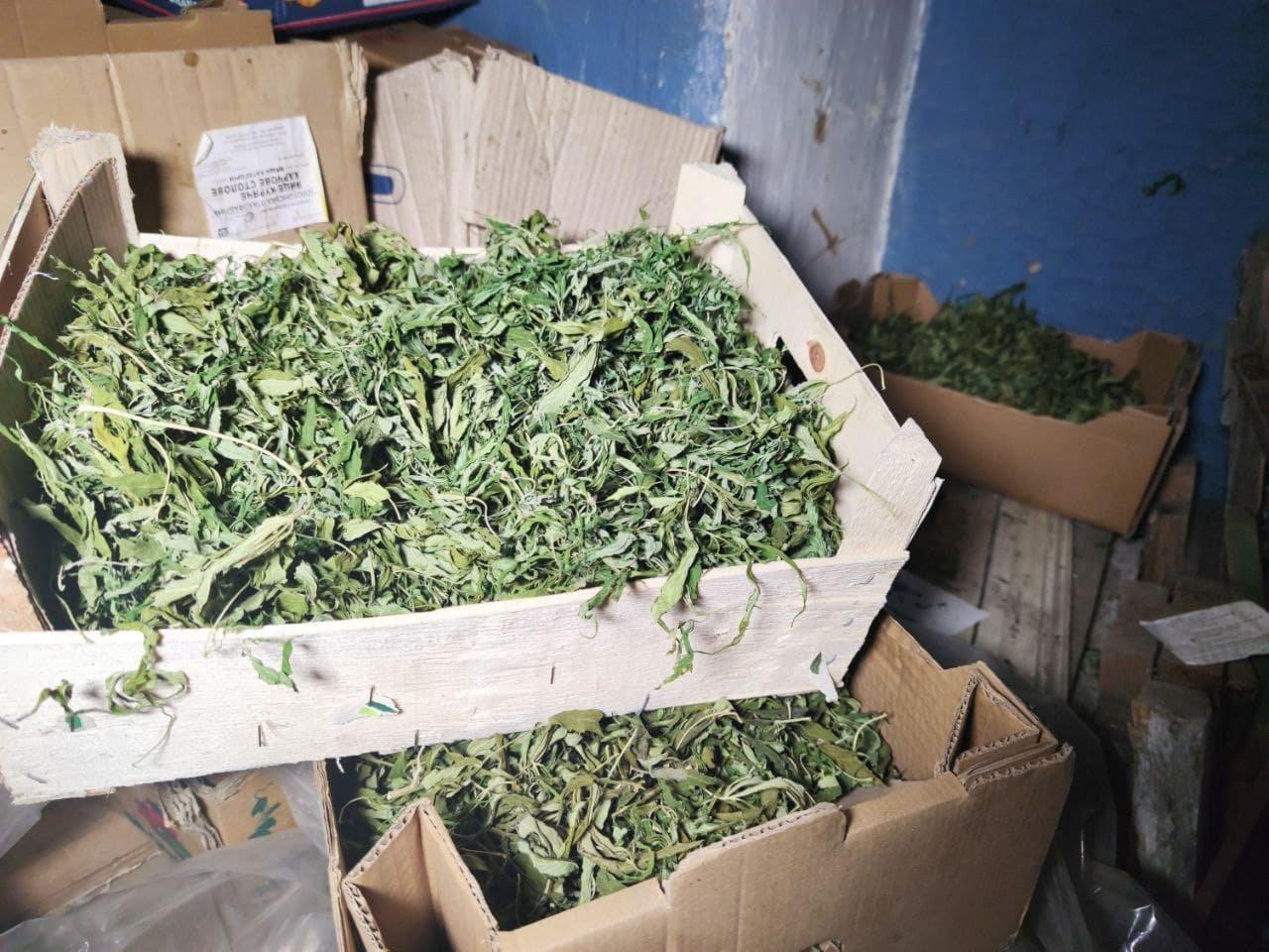 У сімейного дебошира з Райгородка знайшли шість ящиків з марихуаною, фото-3