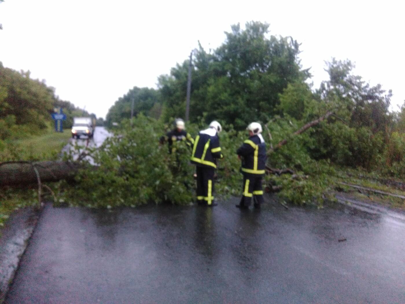 Рятувальники Донеччини ліквідовують наслідки природних катаклізмів , фото-1