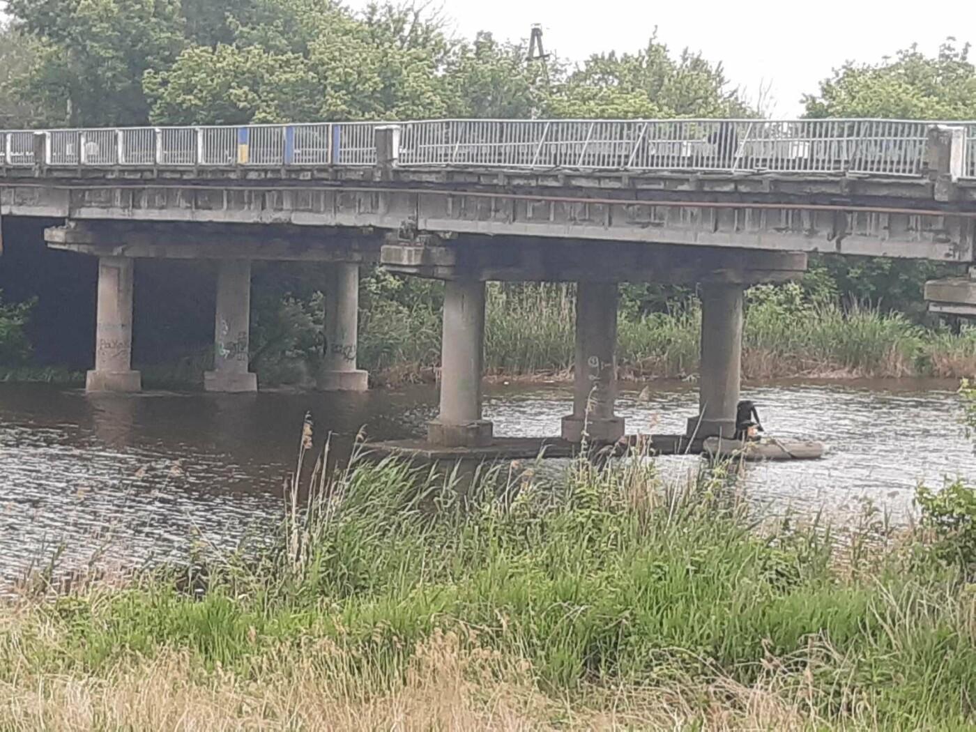 Маленьке кошеня застрягло на мосту через річку. Рятівники Слов'янська врятували пухнастика , фото-3